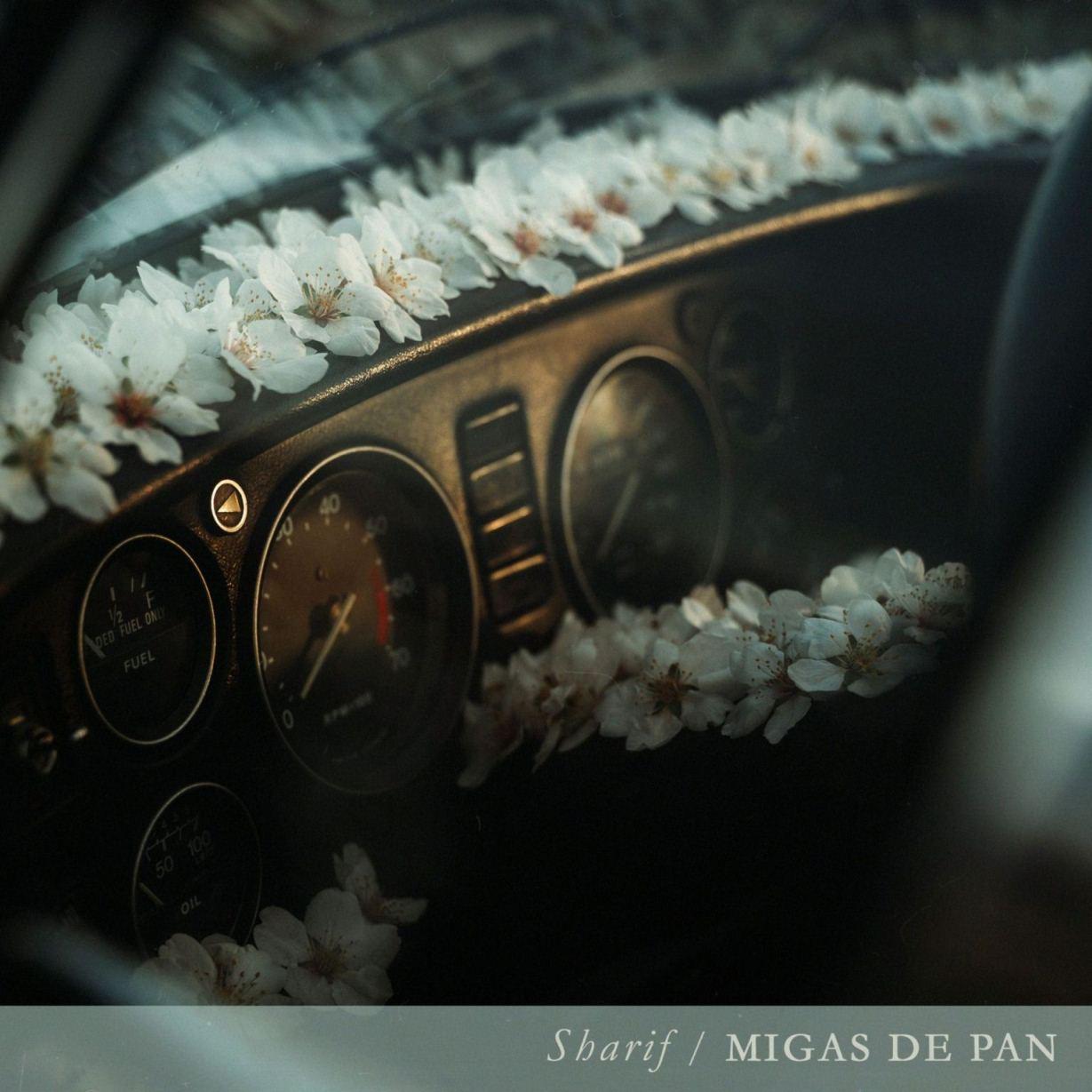 Sharif - Migas de pan (Portada) low