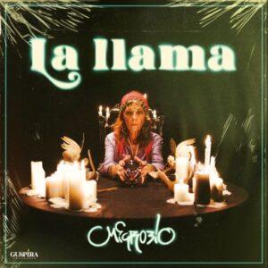 Microbio - La llama (portada) low low